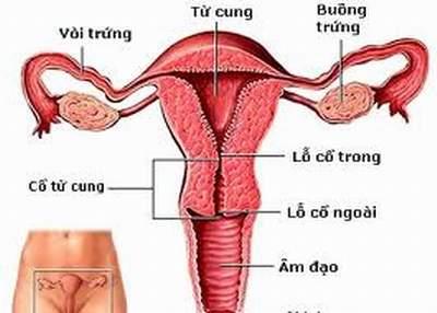 Dấu hiệu viêm âm đạo